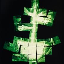 "PEARL STREET 1996 - 20"" X 24"" C Type Print, Ed. 10"