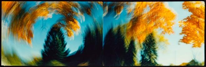 DIPTYCH OPUS 40 1986