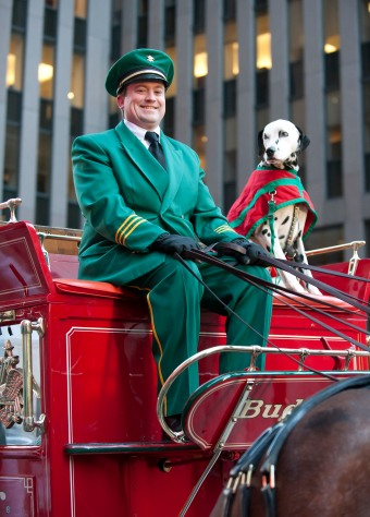 013014-CLYDESDALE-DM-11.jpg Driver and dog on top of carriage, the Budweiser Clydesdale Horses outside of Newscorp Building, 1211 Sixthe Ave, NYC. David McGlynn 1/30/14